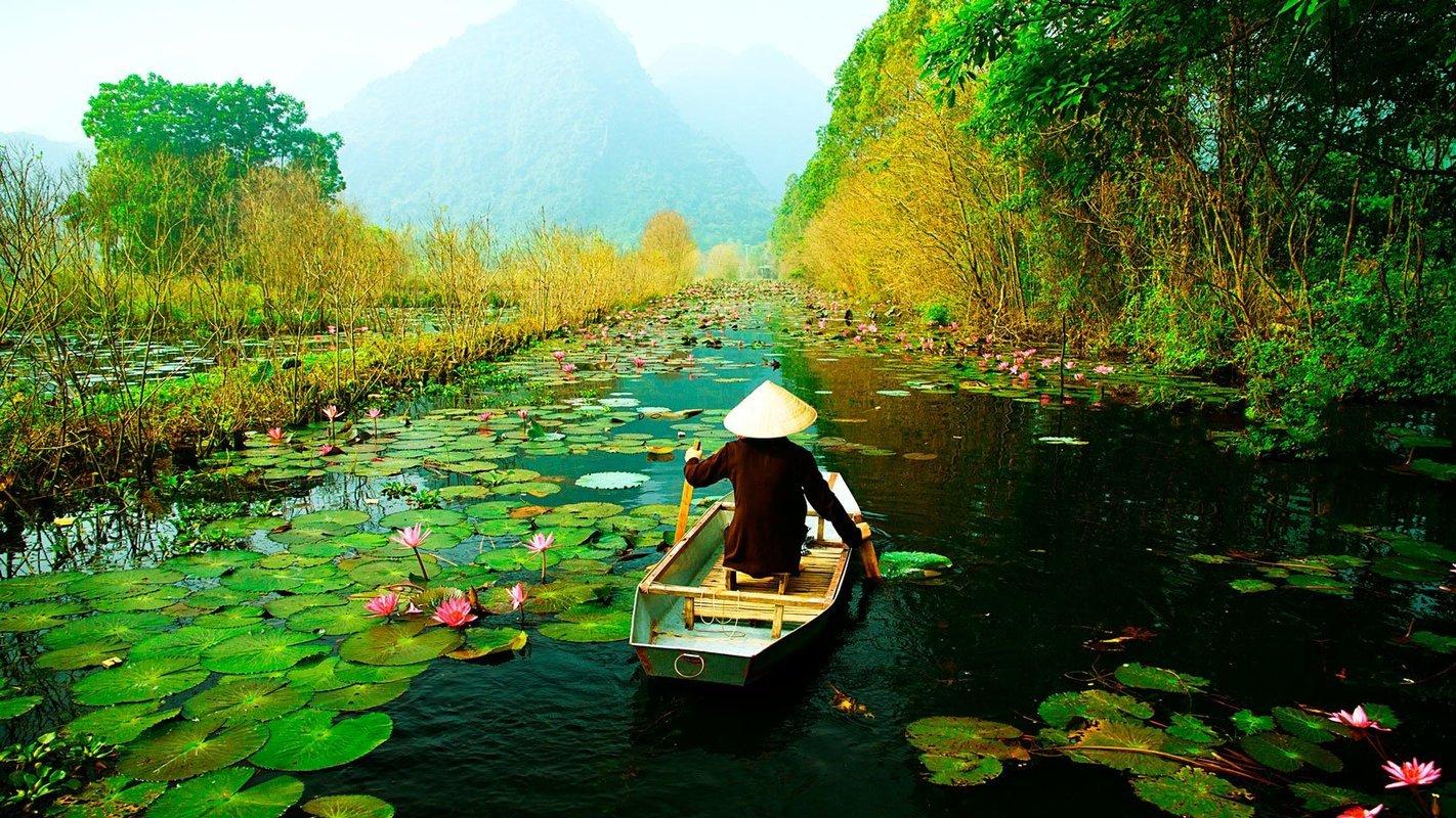 Vietnam - Collection