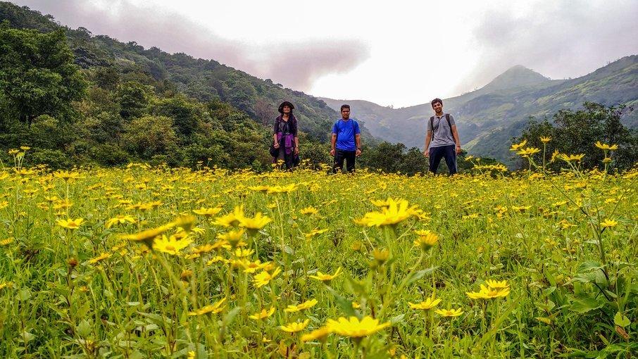 Trek to Ratangad - Tour
