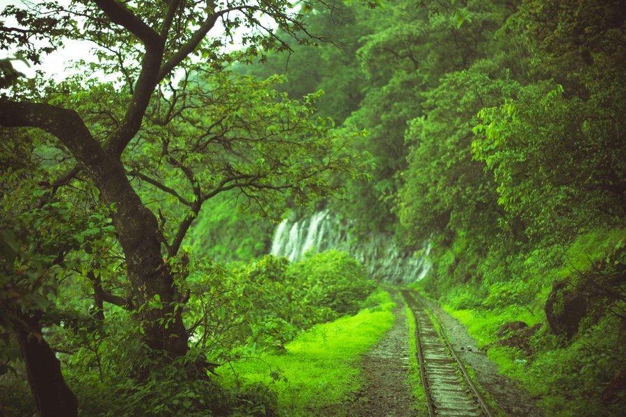 Trek to Peb Fort (Vikatgad) - Tour