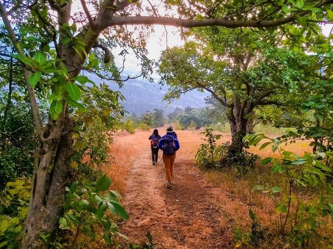 Trek to Tandulwadi - Tour