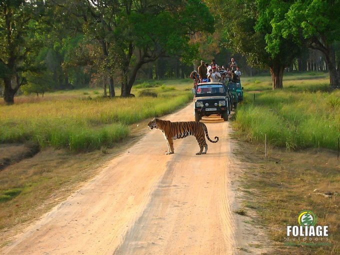 Kanha Wildlife Camp (Ex. Mumbai) - Tour