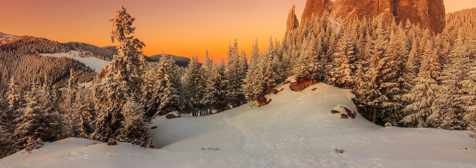Transylvania Winter Walk & Snowshoe, Romania - Tour