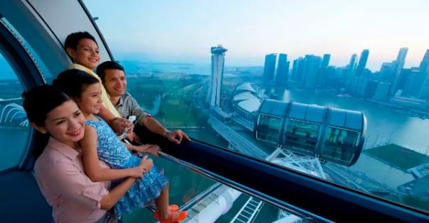 Singapore Flyer and Gardens by the Bay Package - Tour
