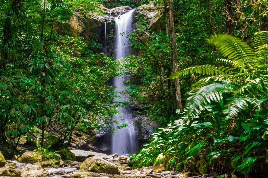 Three Pools and Avocat Waterfall - Tour