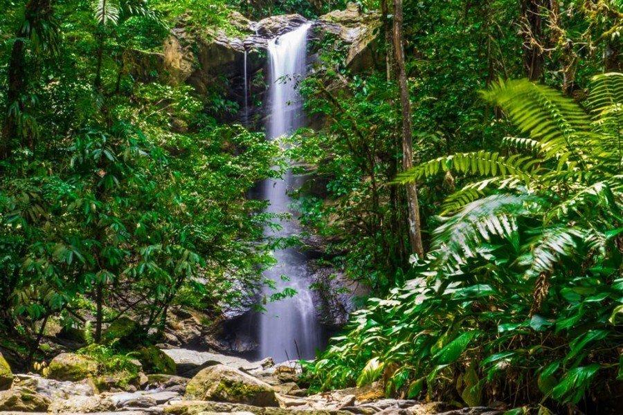 Three Pools and Avocat Waterfall - Tour