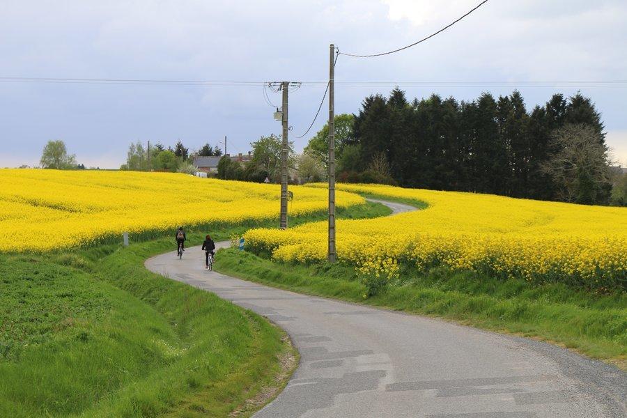 Vale do Loire de bike | 03 dias (autoguiado) - Tour