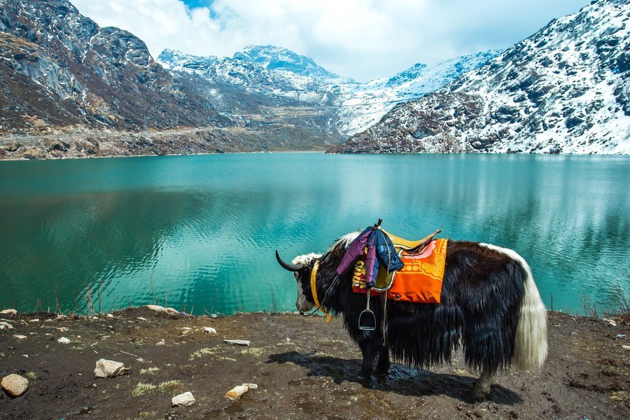 Sikkim Explorer Holiday - Tour