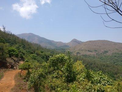 Tadiandamol Trek - Coorg (Bangalore to Bangalore)