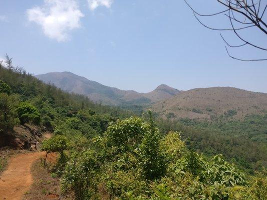 Tadiandamol Trek - Coorg (Bangalore to Bangalore) - Tour