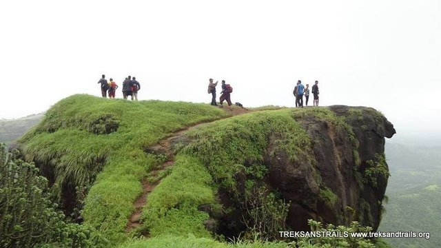 Asangaon Camping and Treks - Collection