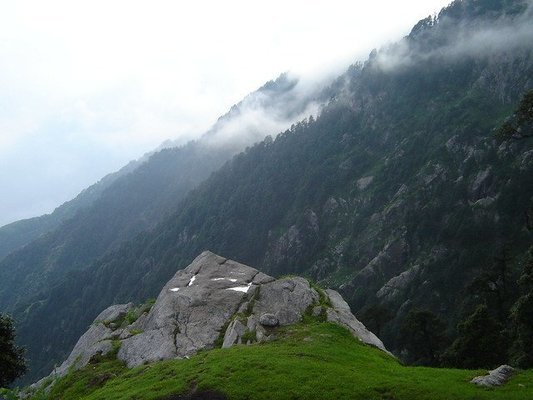 Triund Trek and Camping, Mcleodganj - Tour