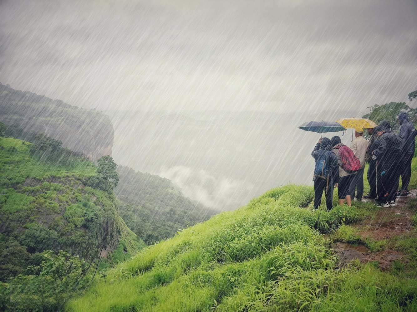 Monsoon Special Trek - Collection