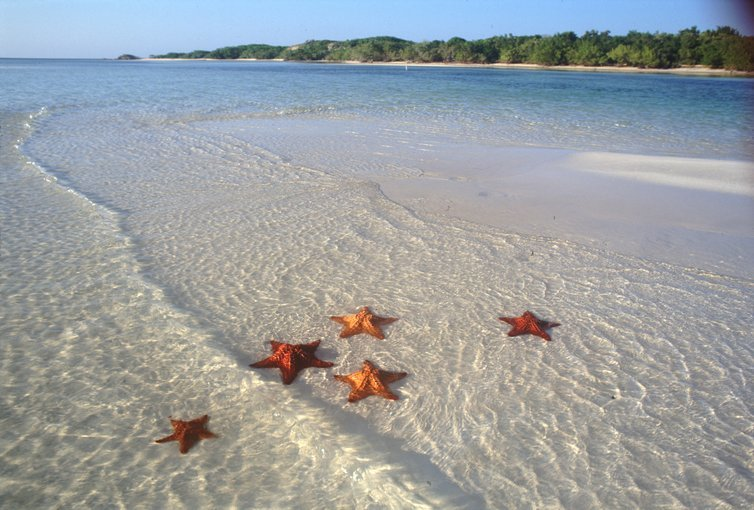Ngapali Beach Getaway - Tour