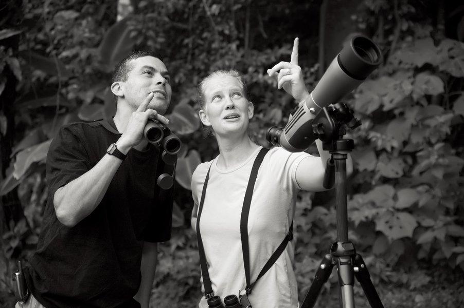 The Shrike's Splendid Birding Safari. - Tour