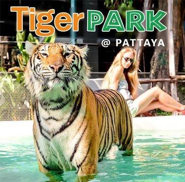 TIGER PARK PATTAYA - Tour