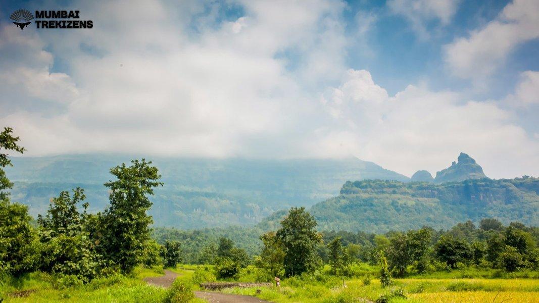 Bhimashankar Trek via Shidi Ghat - Tour