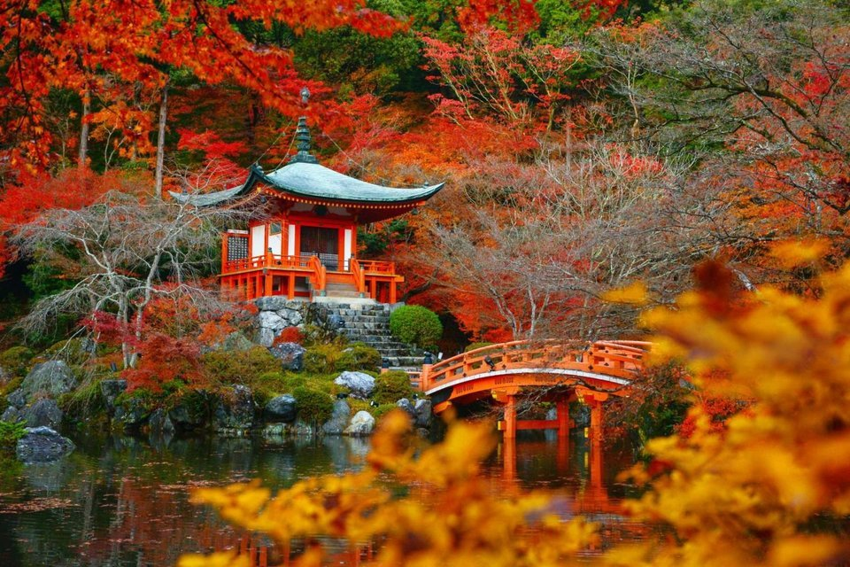 MEMOIRS OF A GEISHA - JAPAN IN FALL COLORS - Tour