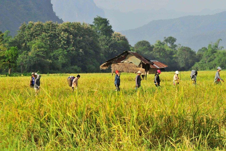 Best of three countries, Cambodia-Vietnam-Laos - Tour
