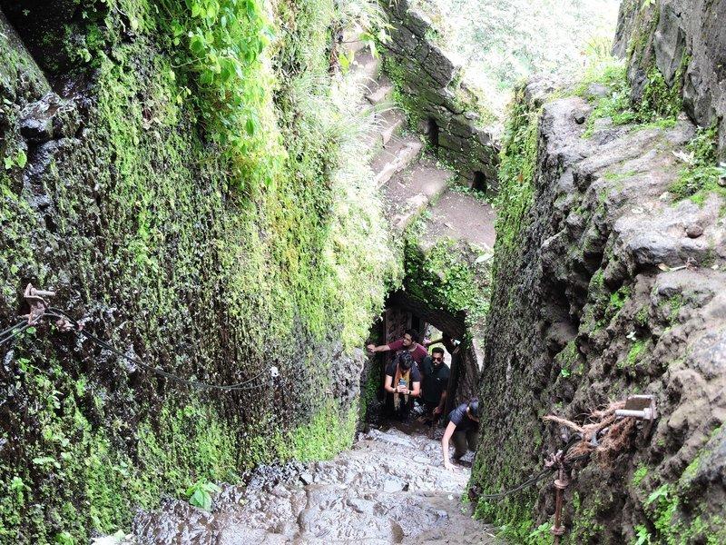 Trek to Fort Tikona - Tour