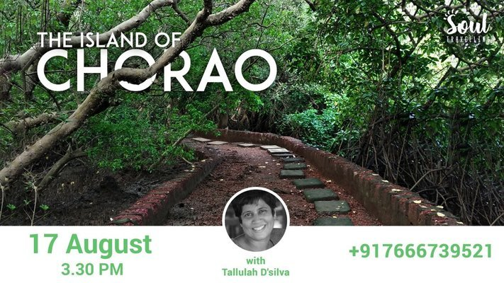 The Island Of Chorao - Tour
