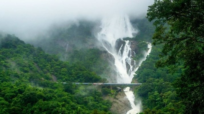 Trek to Dudhsagar Waterfall, Goa - Tour