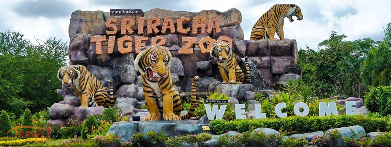 Sriracha Tiger Zoo Entry Ticket in Pattaya - Tour