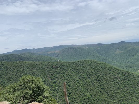 Green Hills Jungle Trek - Tour