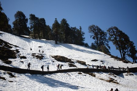 Snow Trek - Garhwal