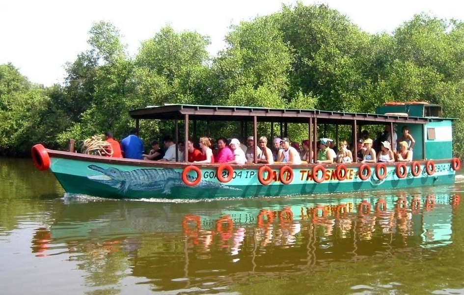 Crocodile Trip and Bird Watching in Goa - Tour