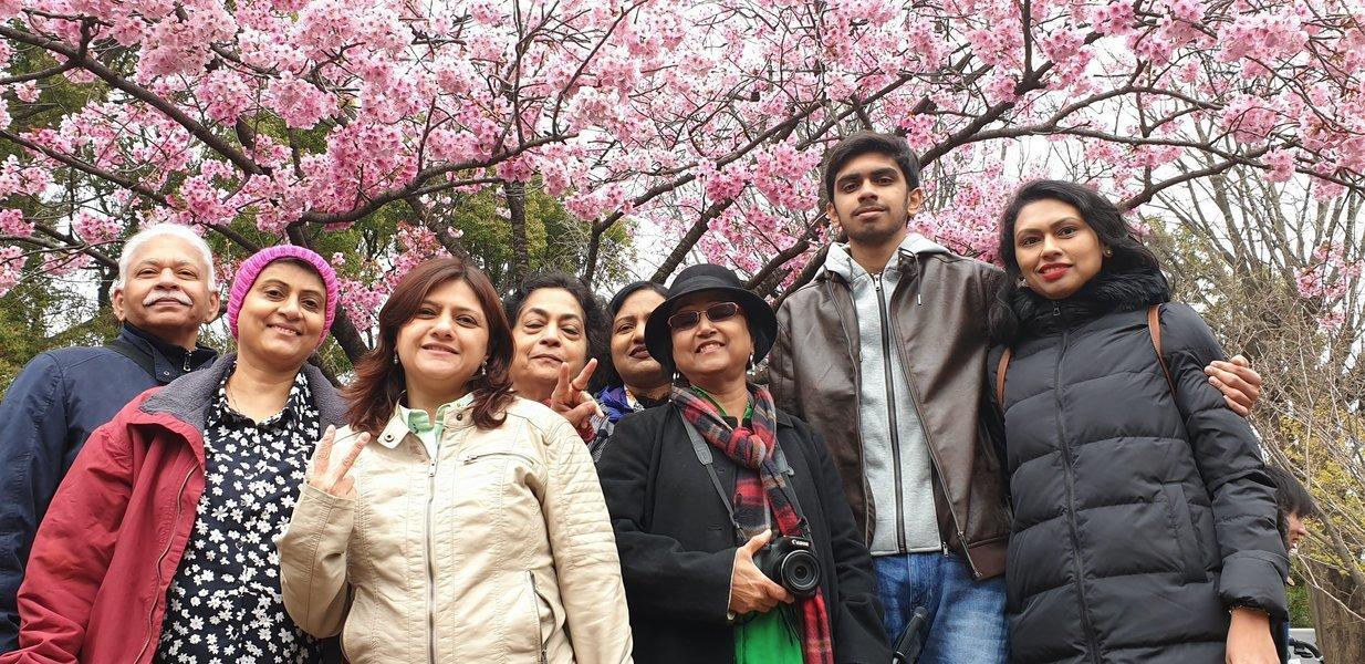 Cherry Blossom Japan with Hiroshima Tour - Tour