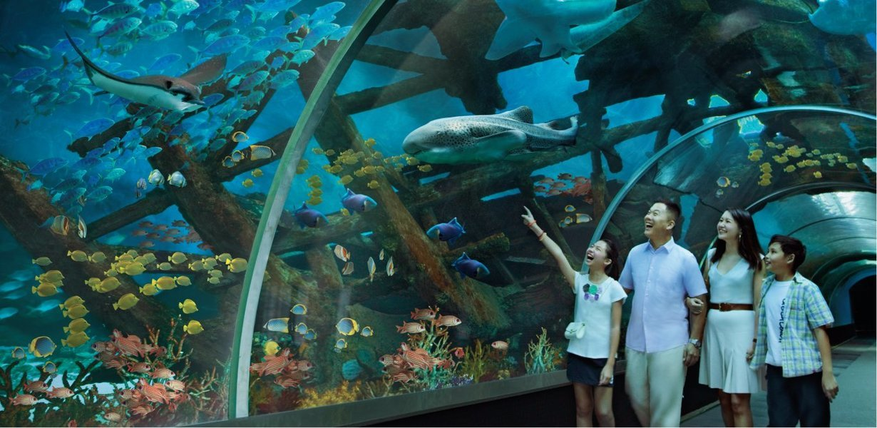 S.E.A. Aquarium Ticket Sentosa, Singapore - Tour