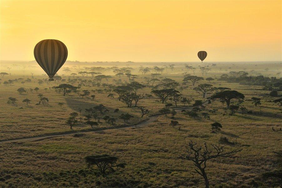Tanzania Safari - Tour