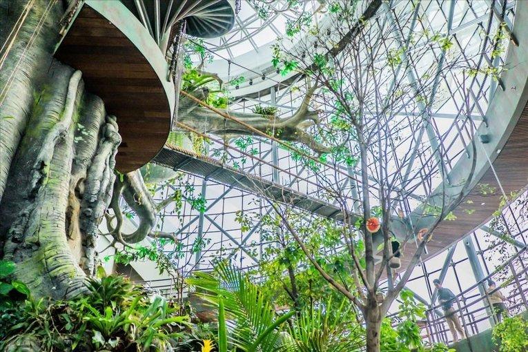 The Green Planet Ticket Dubai - Tour