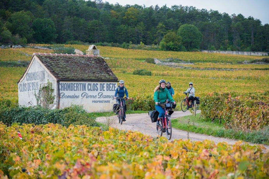 Borgonha de bike   03 dias (com guia) - Tour