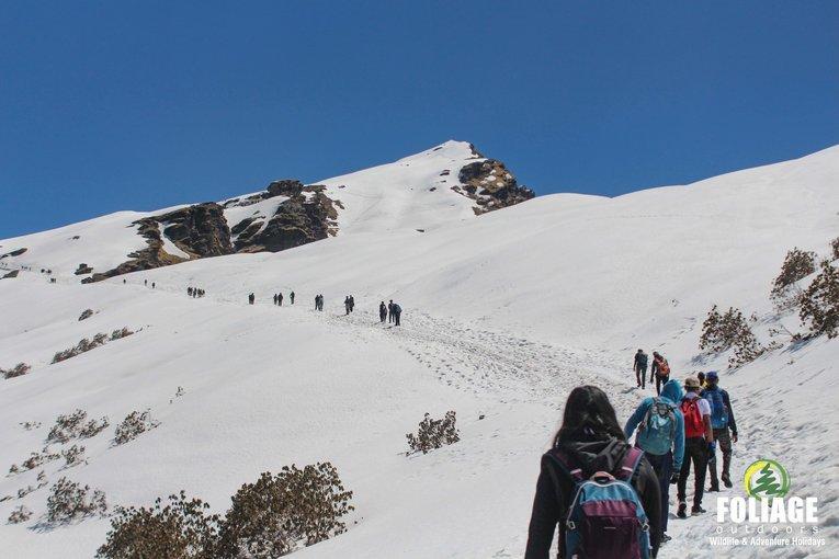 Chandrashila Chopta Trek - Tour