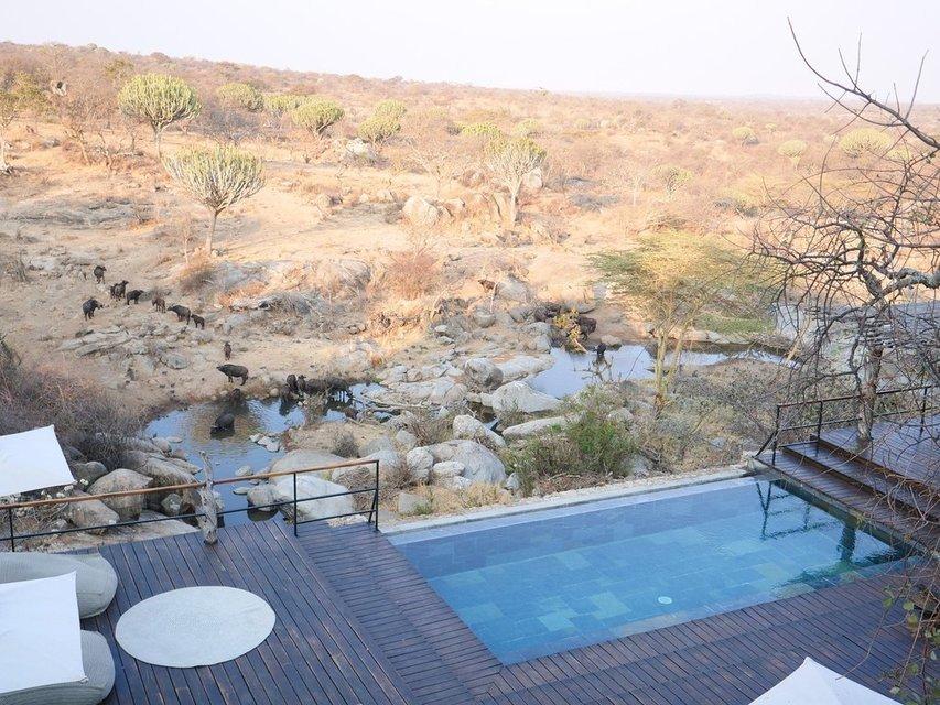 Mwiba Lodge - Tour