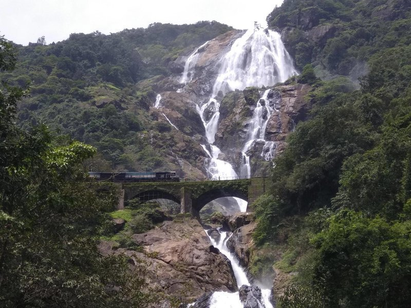 Dudhsagar Waterfall Day Tour from Goa - Tour
