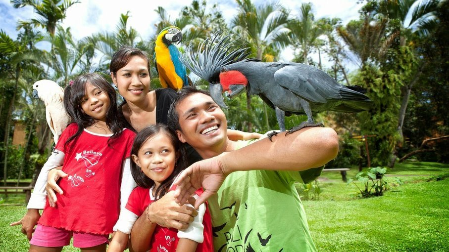 Bali Bird Park - Tour