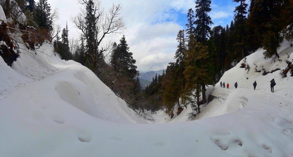 Undiscovered Himachal - Tirthan and Sonaugi - Tour