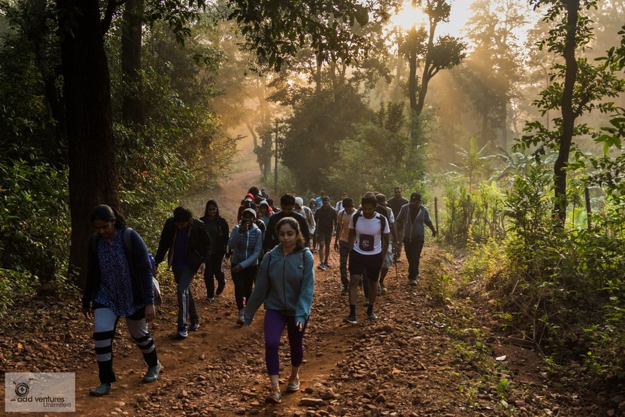Kodachadri Trek & Hidlumane Falls - Tour