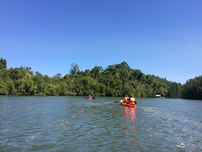 Kubang Badak Mangrove River Join-In Kayaking Tour - Tour