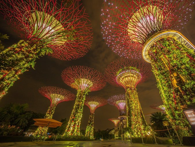 Gardens by the Bay Ticket in Singapore - Tour