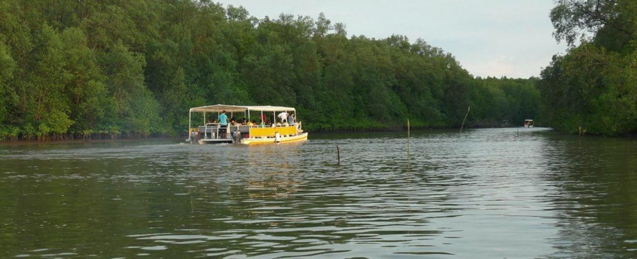 Nanamun River Cruise in Sabah - Tour