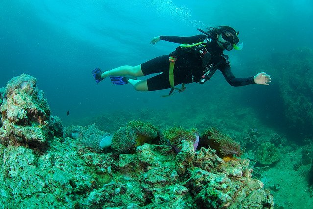 Scuba Diving at Baina Beach - Tour