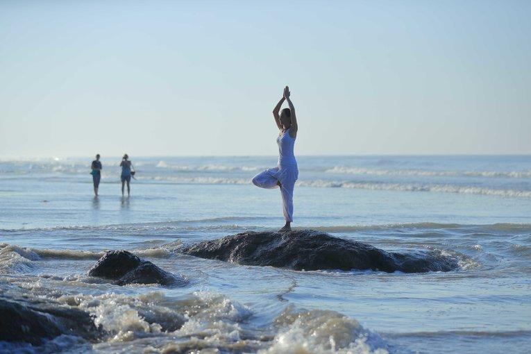 Palmshore - Ayurveda Stress Management Program - Tour