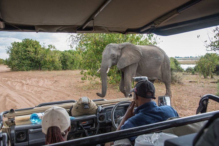 Best of Zambia, Zimbabwe and Botswana - Tour