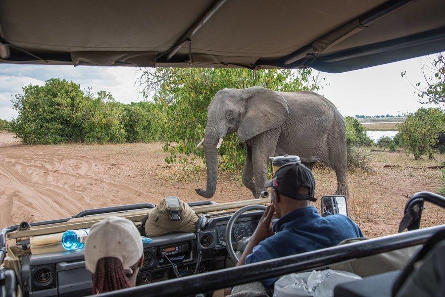Best of Zambia, Zimbabwe and Botswana - Tour
