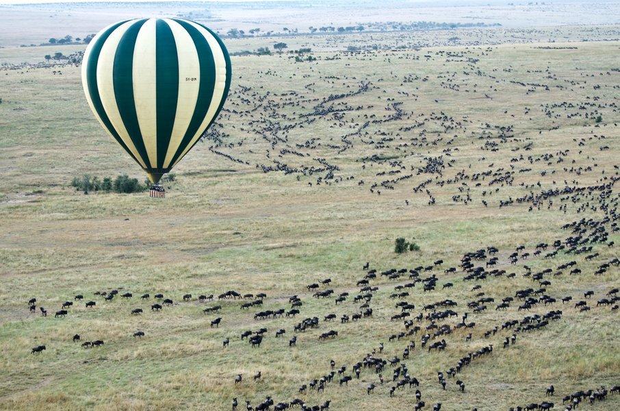 Serengeti Hot—air Balloon Safari - Tour