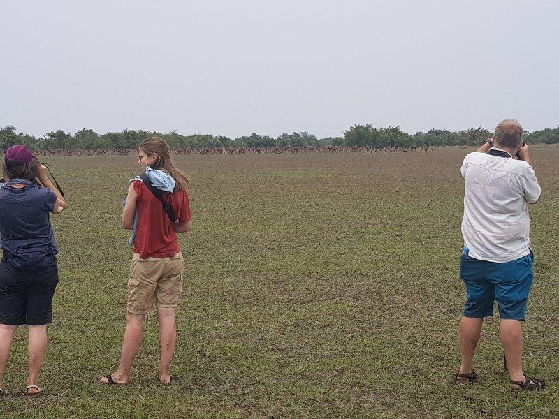 Hwange National Park Day Trip - Tour