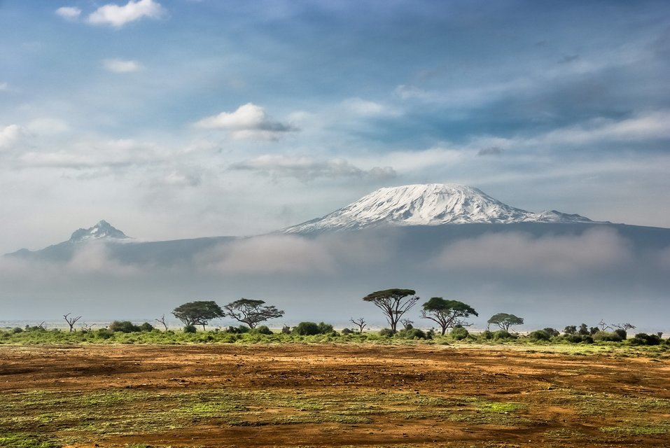 Kilimanjaro Hike Adventure - Tour